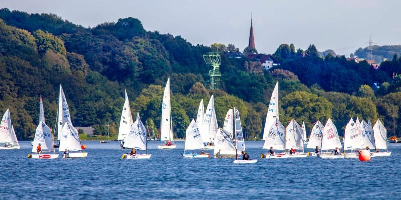 Foto: Eine Kolonne weißer Segelboote auf einem See. Im Hintergrund sind grüne Baumwipfel zu sehen.
