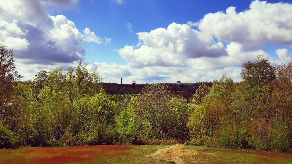 Aussicht Mechtenberg