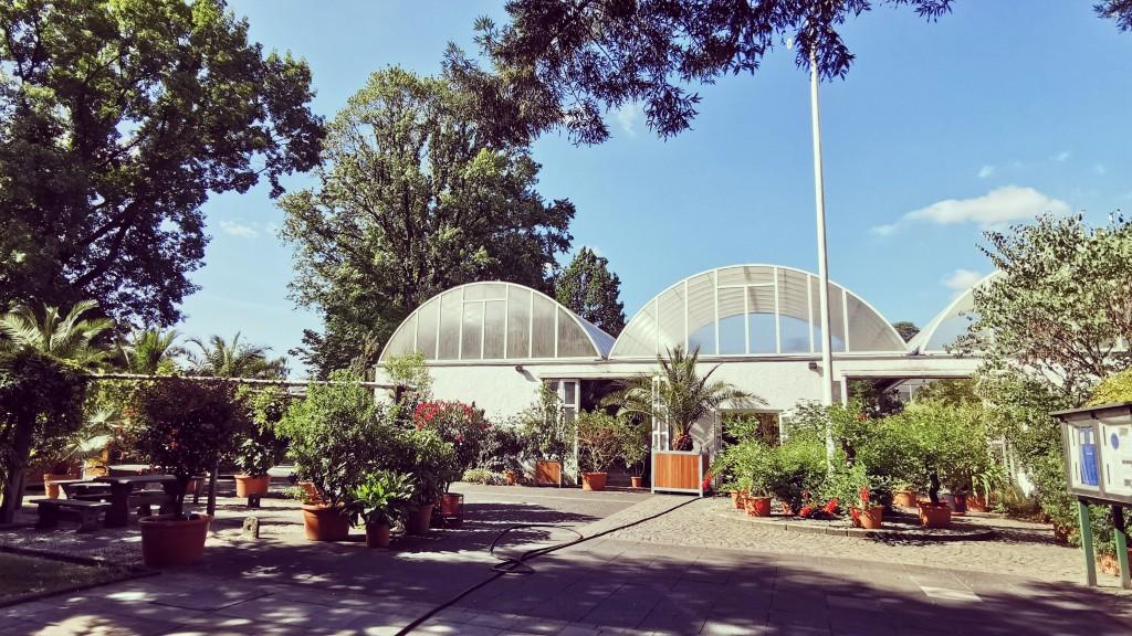 Palmenhäuser im Grugapark Essen