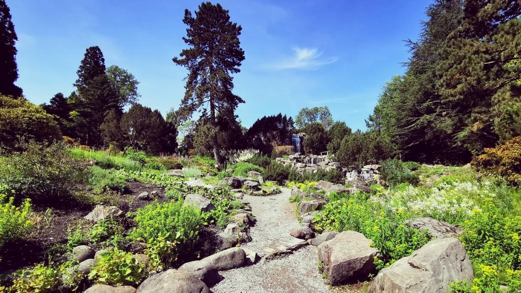 Alpinum im Grugapark Essen