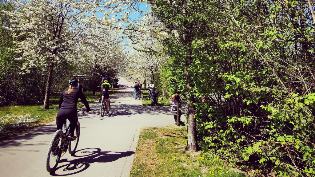 Radfahrer auf der Trasse