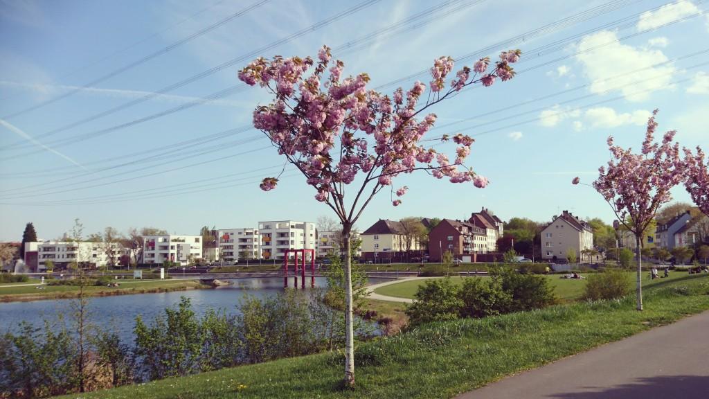 Niederfeldsee