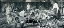 Foto Kriegsschulgarten der Luisenschule in der Geibelstraße