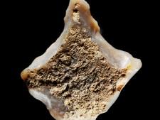 Foto Mittelsteinzeitlicher Bohrer aus Kupferdreh