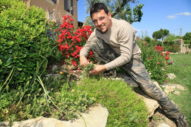 Ein junger Mann in Arbeitskleidung entfernt lächelnd Gräser aus einer Vorgartenbepflanzung.