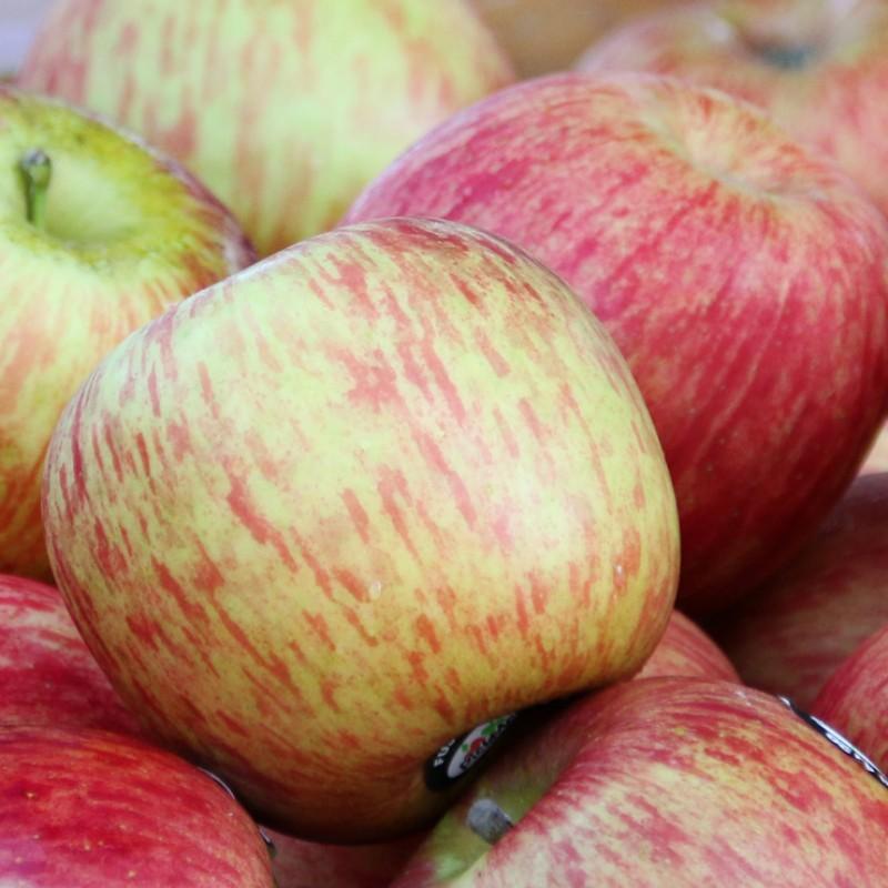 eine Kiste Äpfel