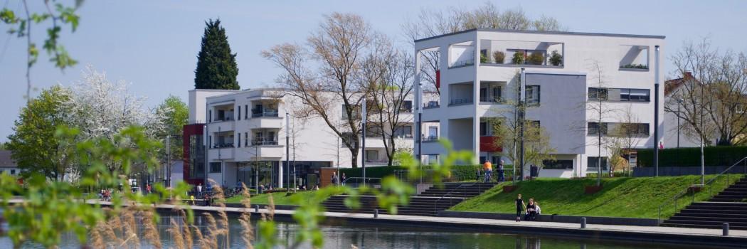 Foto: Im Vordergrund grüne Äste, im Hintergrund ein Gewässer an dessen Uferrand weiße Mehrfamilienhäuser stehen