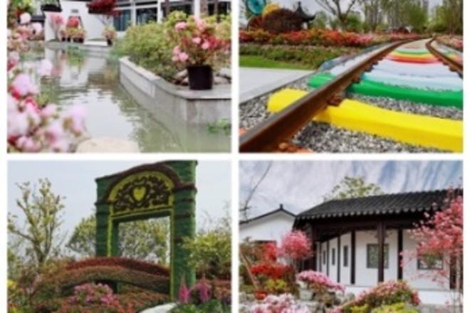 Changzhou im Blumenmeer