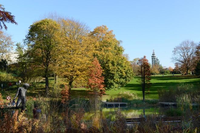 Herbst im Grugapark