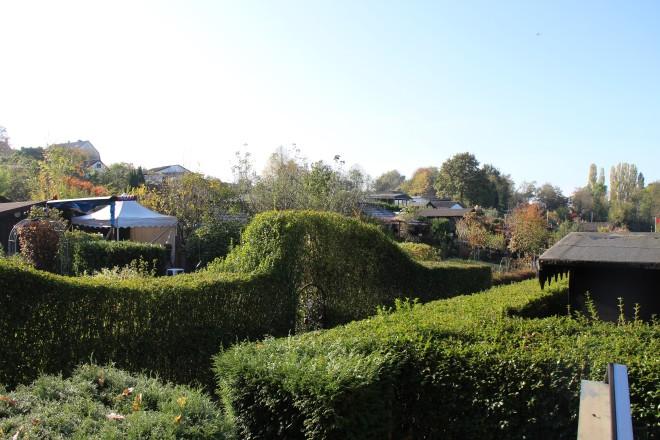 Foto:Kleingartenanlage überwiegend Hecken