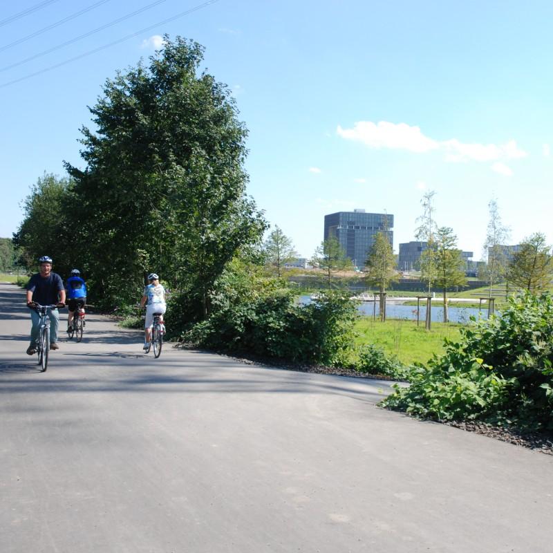 Foto: Asphaltierte Strecke mit Radfahrern