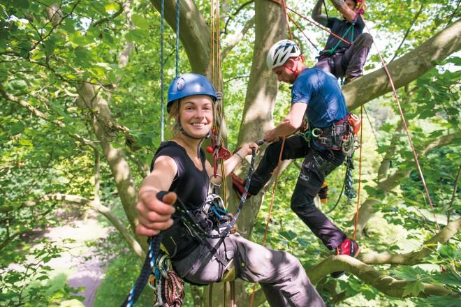 Zwei Studierende in Kletterausrüstung in einer Baumkrone