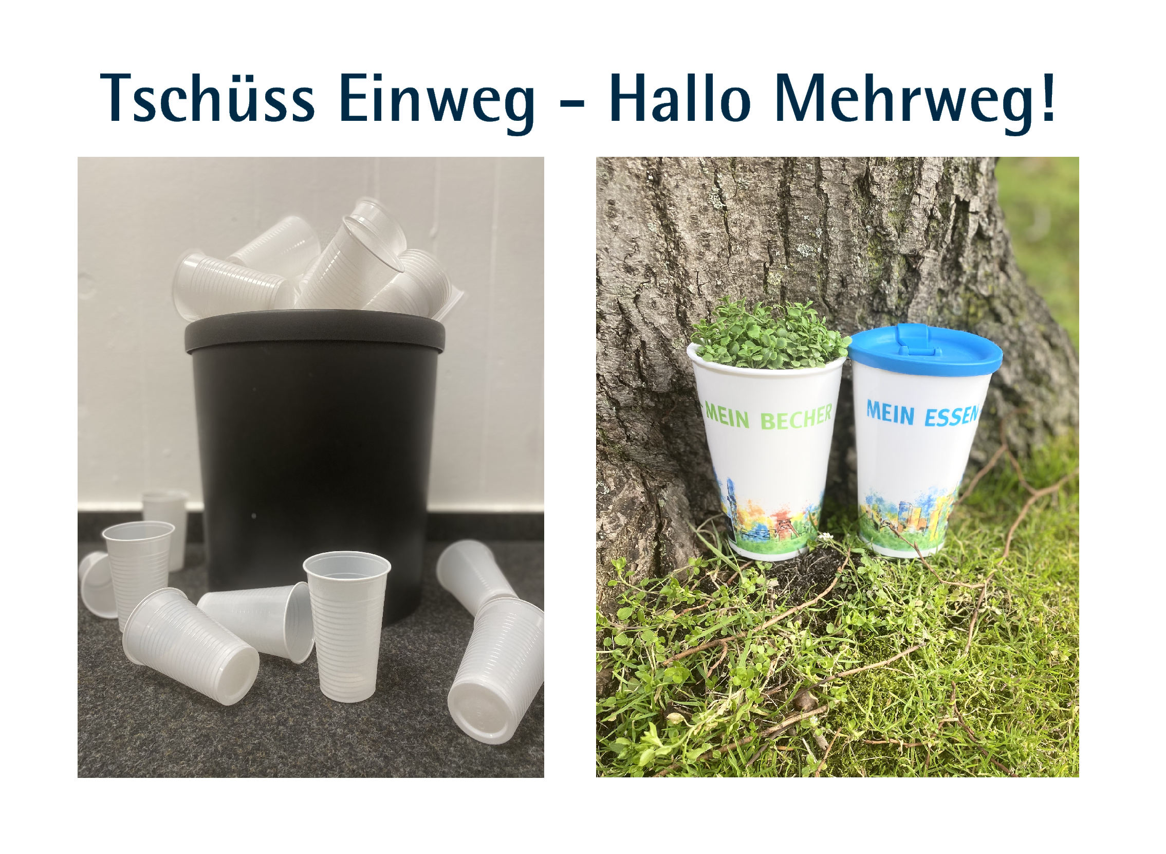 Zum Thema Nachhaltigkeit sind mehrere Plastikbecher in einem Mülleimer abgebildet. Daneben sind neue Mehrwegbecher im Grünen abgebildet.