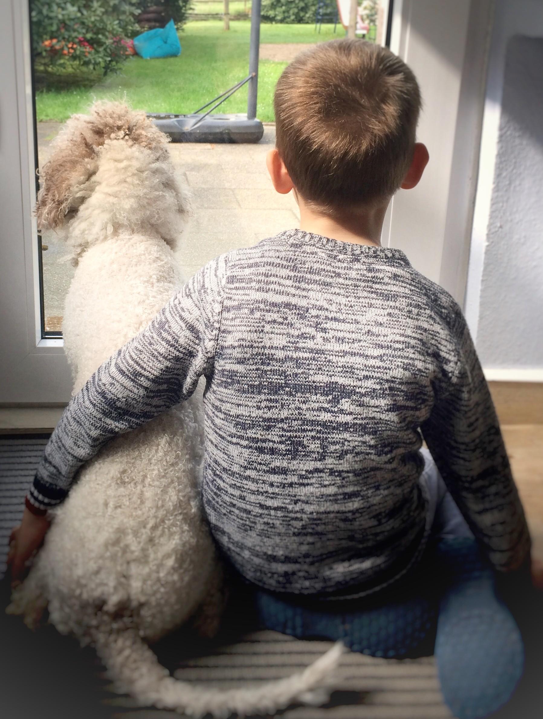 Junge und Hund schauen aus dem Fenster