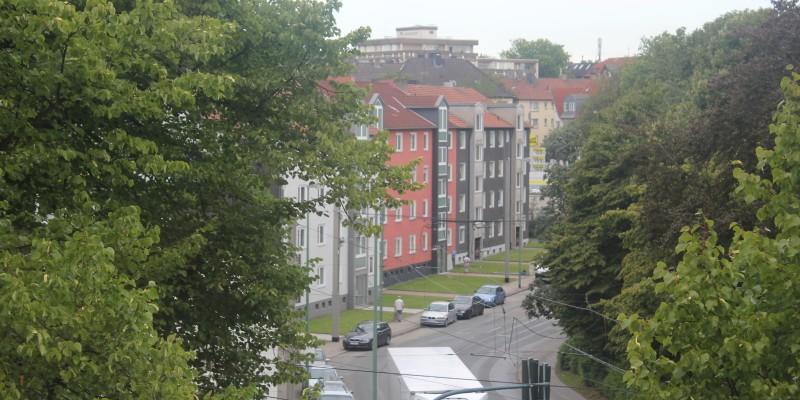 Foto: Ein Blick aus dem Fenster zeigt Baumkronen und den Straßenverlauf mit Wohnhäusern