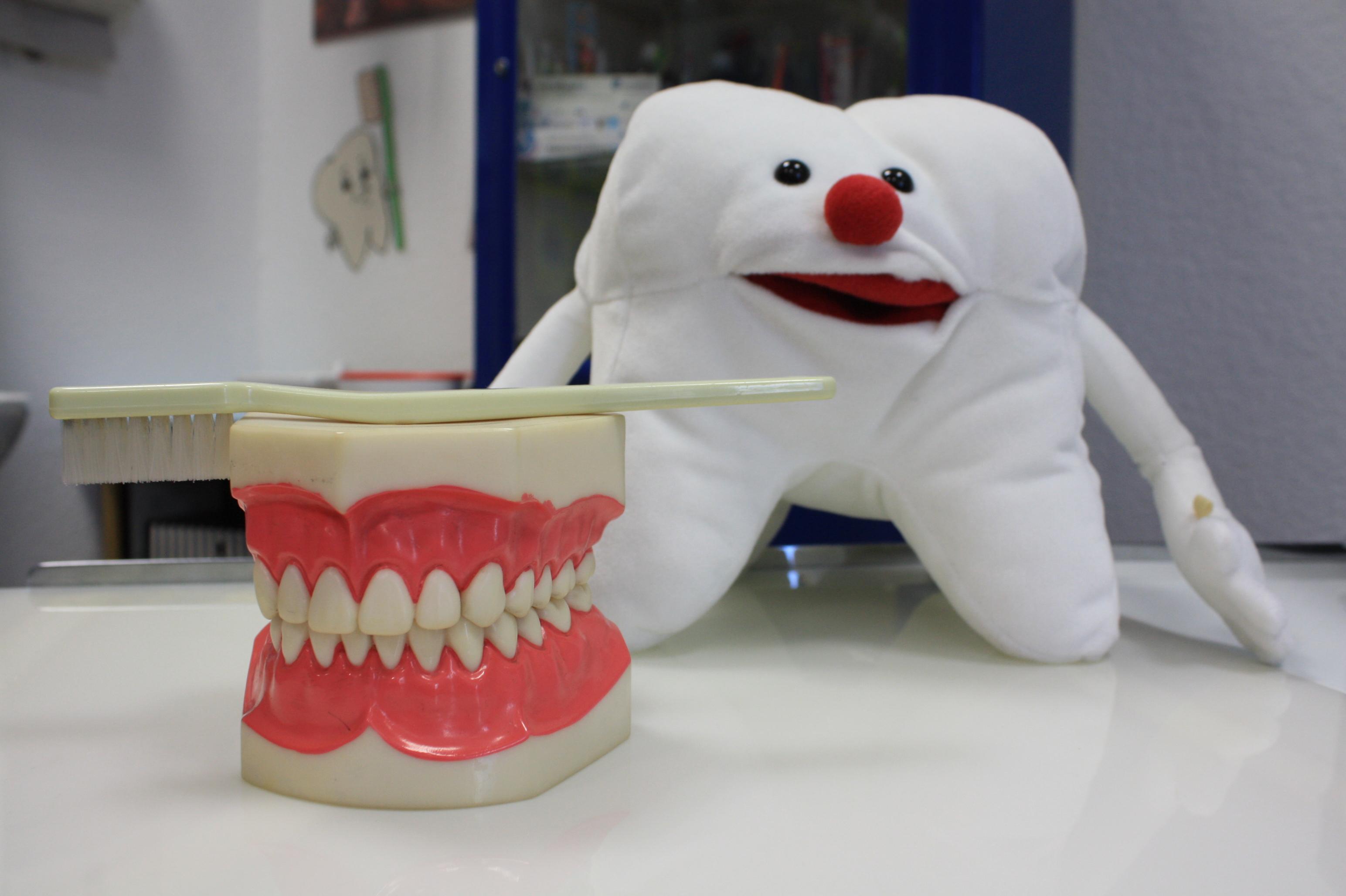 Bild: Zahnärztlicher Gesundheitsdienst