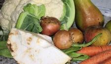 Foto: verschiedene Gemüse und Obst