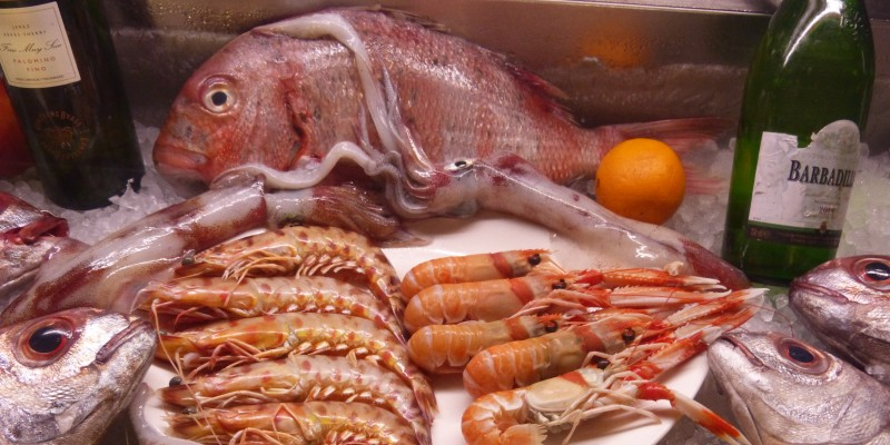 Foto: Fische in einer Auslage