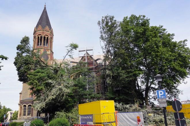 Foto: Baumgruppe vor der Kreuzeskirche