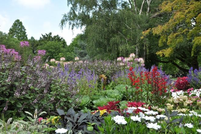 Sommerblumen auf den Farbenterrassen im Grugapark