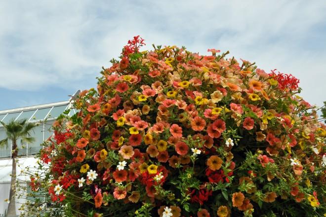 Blumenstele mit Sommerblumen im Grugapark