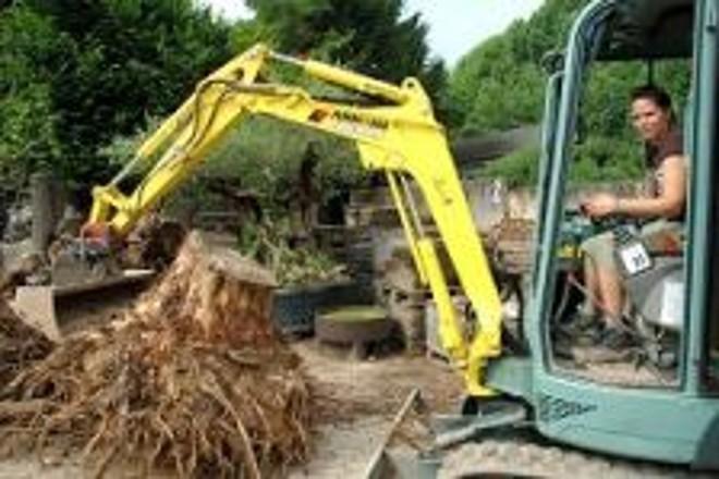 Foto: eine Gärtnerin nutzt zum Entfernen von Baumwurzeln einen Minibagger