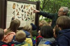 Ein Förster erklärt Kindern eine Schautafel