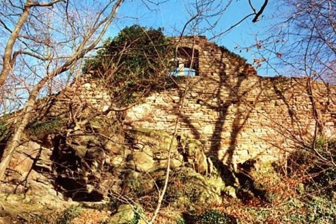 Ruine: alte Mauern im Wald