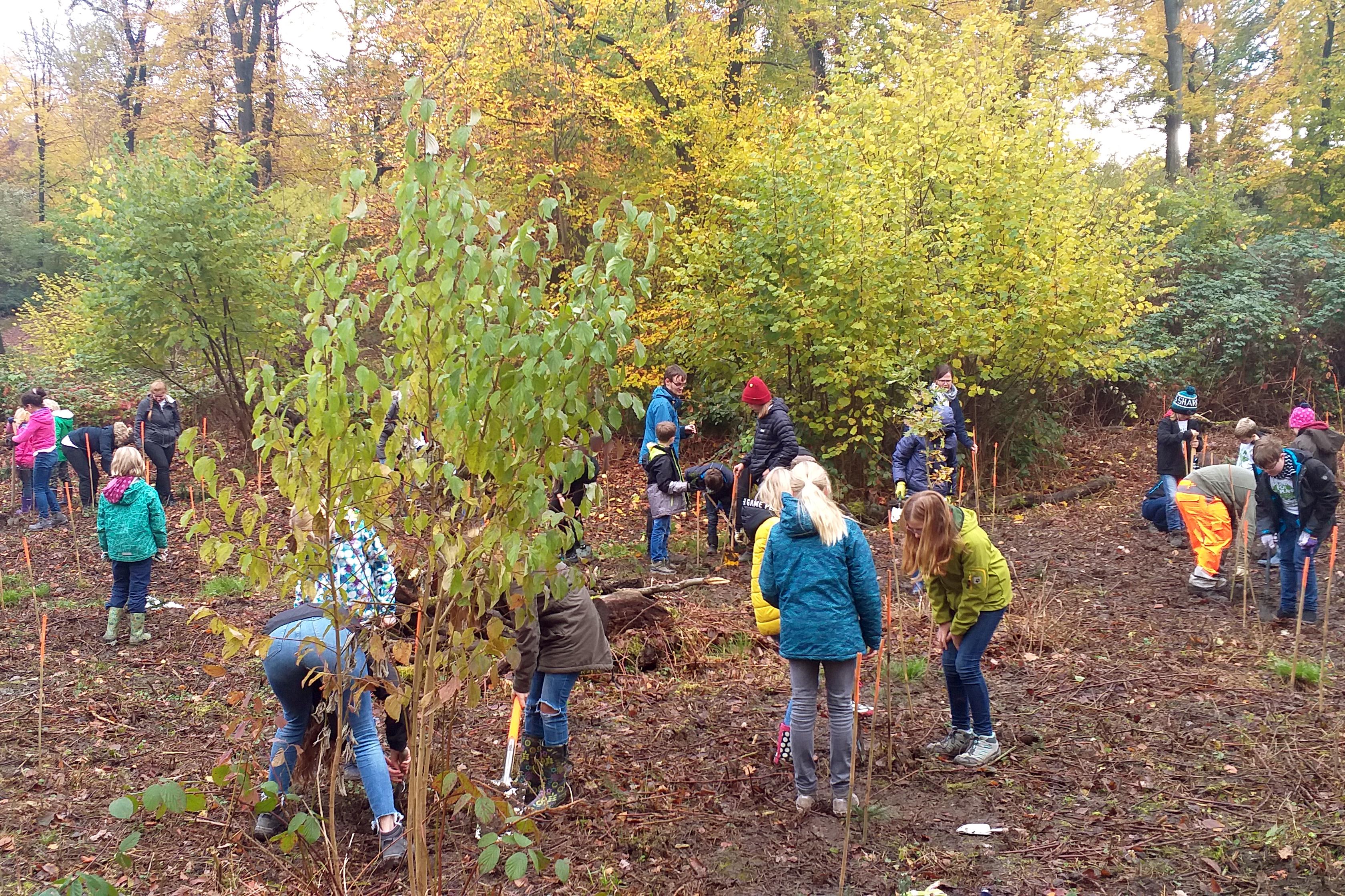 Baumpflanzungen durch die Plant-for-the-Planet Klimabotschafter-Akademie
