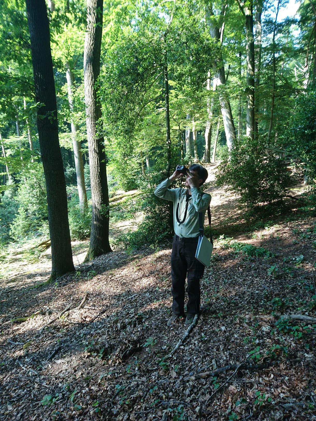 Betriebsinventur in den Essener Wäldern