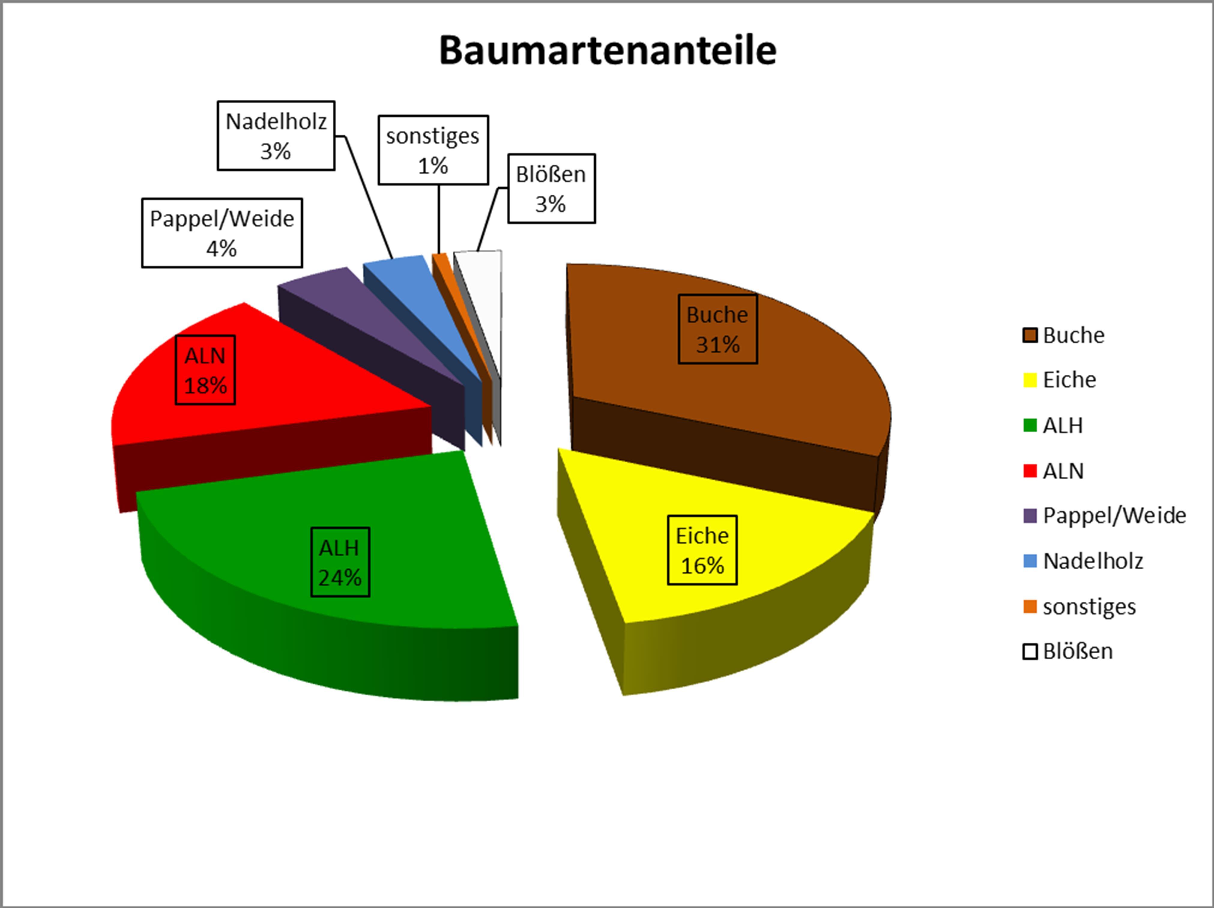 Grafik: Baumartenanteile im Essener Wald (Betriebsinventur 2017)