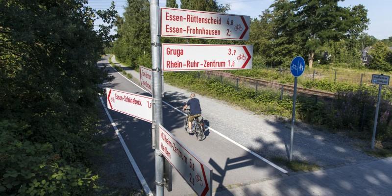 Fahrradfahrer auf Radweg, davor Fahrradwegweiser