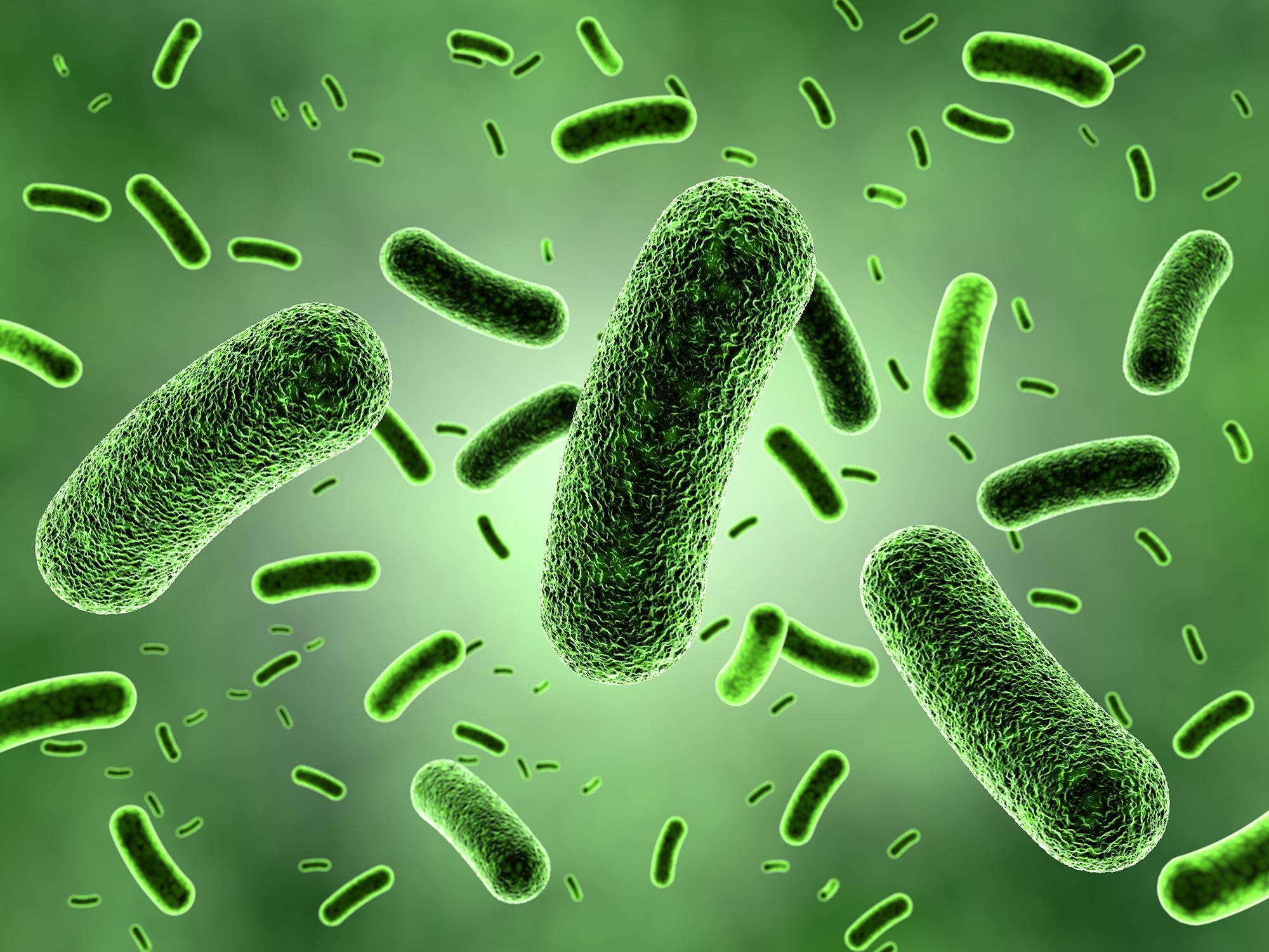 Computergenerierte Nahaufnahme von grünen Bakterien.