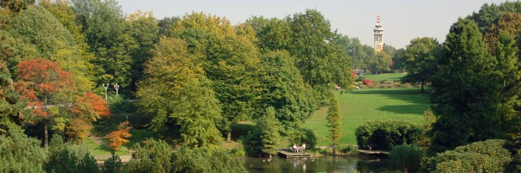 Foto: Grugapark Blick auf den Grugaturm