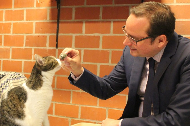 "Foto: Oberbürgermeister Thomas Kufen mit Patenkatze ""Lotte"""