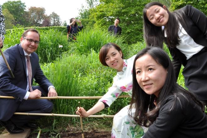 Oberbürgermeister Thomas Kufen sät gemeinsam mit chinesischer Delegation aus der Essener Partnerstadt Changzhou eine Immergrüne Magnolie im Grugapark aus.