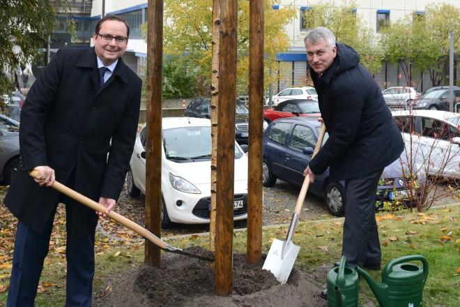 Baumpflanzaktion anlässlich der Städtepartnerschaft mit Nishnij Nowgorod. Oberbürgermeister Thomas Kufen (links ) und Sergej Belov, Oberstadtdirektor aus Nishnij Nowgorod