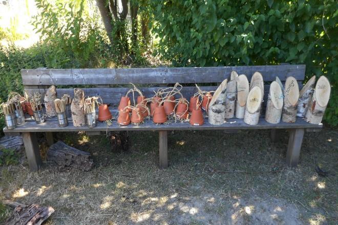 Artenschutz – Erhaltung der Honigbiene und Wildbienen