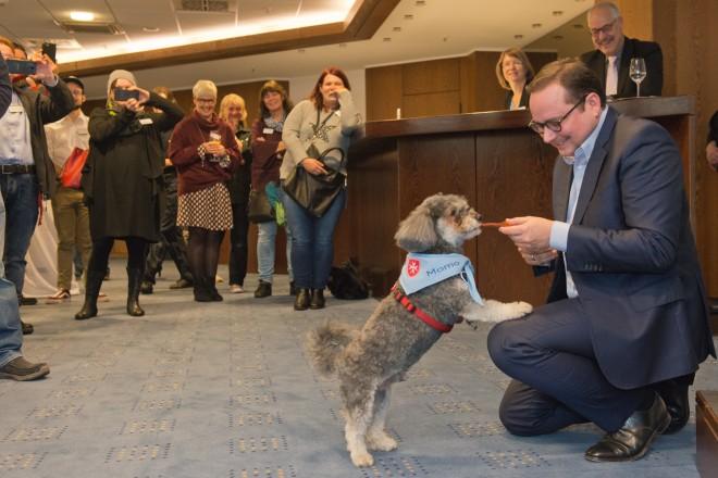 Ein Mann kniet sich zu einem Hund hin und füttert ihn lächelnd. Viele Leute stehen im Hintergrund und amüsieren sich und zücken ihre Handys