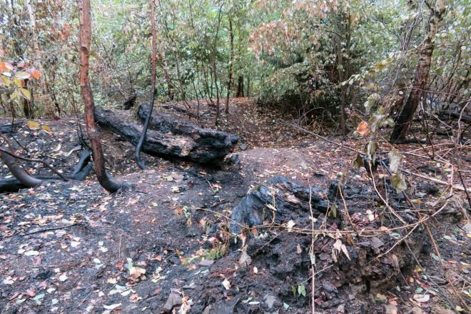 Brandspuren an der Ruine der Alteburg