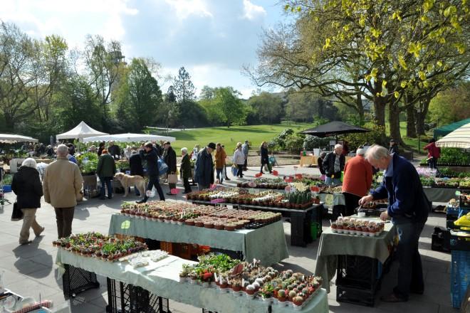 Bereits seit 1993 präsentieren und verkaufen Gärtnerinnen und Gärtner beim Frühjahrs-Pflanzenraritätenmarkt ihre Schätze.