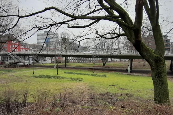 Der rund 7.000 Quadratmeter große Waldthausenpark soll umgestaltet werden.