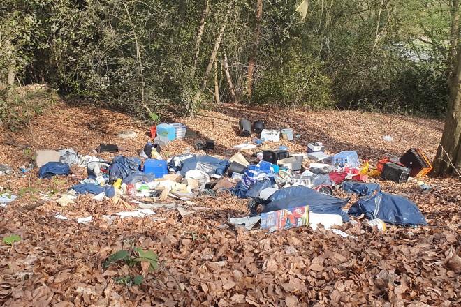 Illegale Müllablagerung im Schellenberger Wald