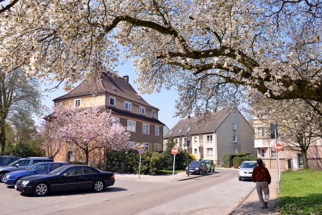 Frühling in Essen-Altendorf. Bockmühlenweg Ecke Hirtsieferstraße, Hedwig-Dransfeld-Platz.