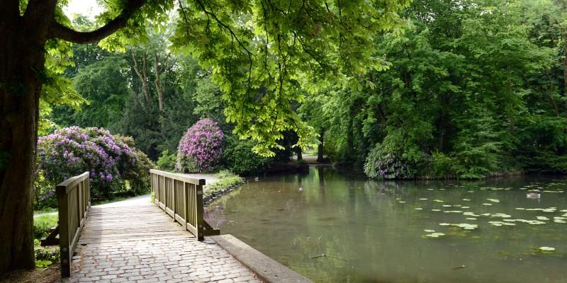 Schlosspark Borbeck