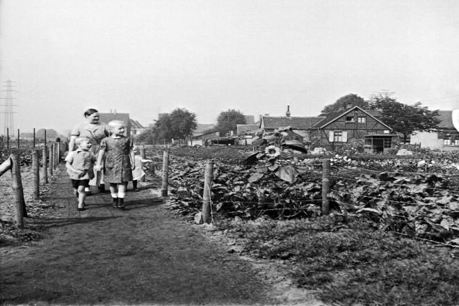 Kleingarten in Karnap, 20.8.1935