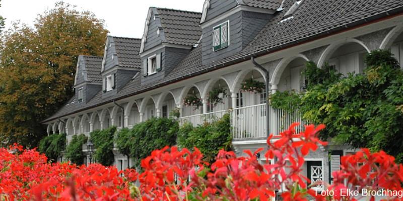 Im Vordergrund rote Blumen, im Hintergrund ein Laubengang an einem Haus