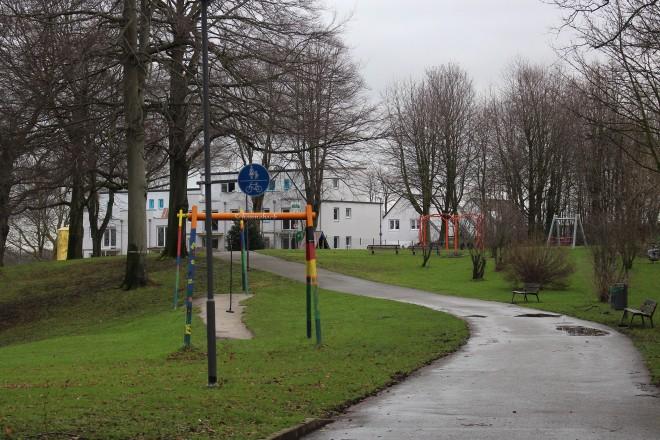 Fußgängerweg, der durch einen Park mit blattlosen Bäumen und grüner Wiese führt