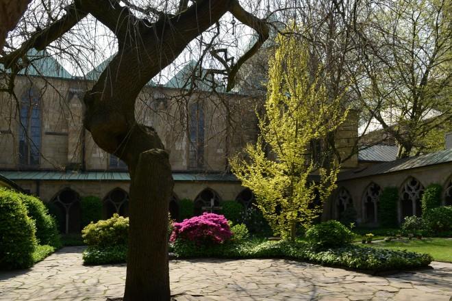 Frühling im Innenhof der Münsterkirche