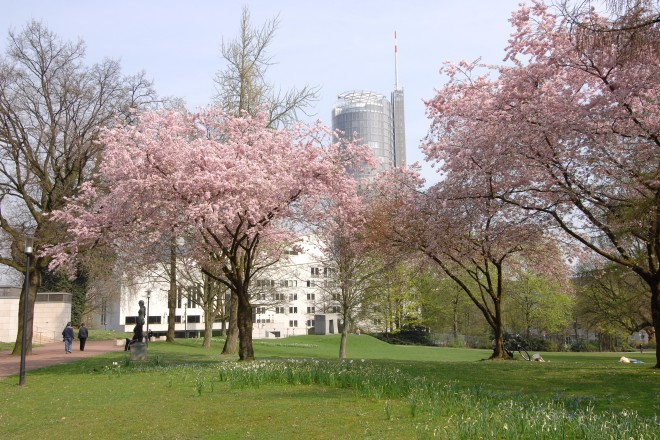 Frühling im Stadtgarten